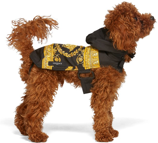 VERSACE Dog Raincoat Baroque